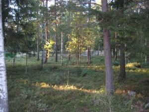 Del av Schweizerparken